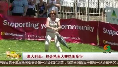 澳大利亞:扔金槍魚大賽熱鬧舉行