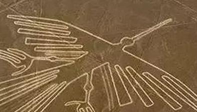 """卡車強闖""""納斯卡線條"""" 秘魯兩千年遺跡受損"""