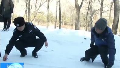 黑龍江:綏芬河森林公園發現疑似老虎足跡