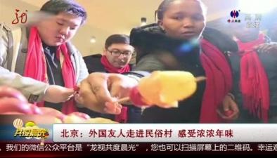 北京:外國友人走進民俗村 感受濃濃年味