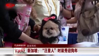 """盛裝亮相:新加坡""""汪星人""""時裝秀迎狗年"""