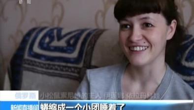 俄羅斯:小松鼠走紅網絡 貪吃好動惹人愛