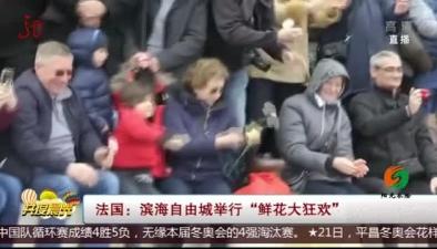 """法國:濱海自由城舉行""""鮮花大狂歡"""""""