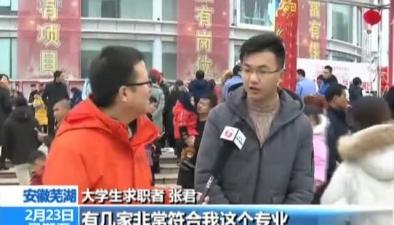 安徽蕪湖:新春招聘會吸引近4萬求職者