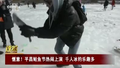 愜意!平昌鮭魚節熱鬧上演 千人冰釣樂趣多