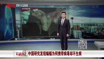 中國研究發現蝙蝠為何攜帶病毒卻不生病