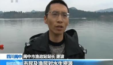 四川閬中:誤捕野生娃娃魚 漁民及時放生
