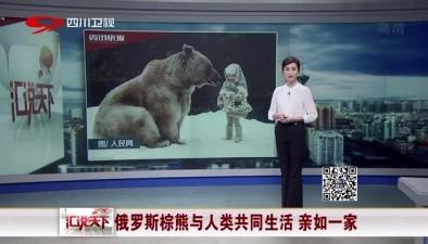 俄羅斯棕熊與人類共同生活 親如一家