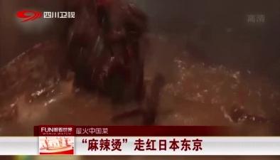 """最火中國菜:""""麻辣燙""""走紅日本東京"""