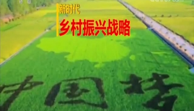 《鄉村振興戰略大家談》 第一集 鄉村振興