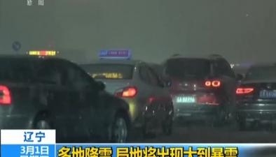 遼寧:多地降雪 局地將出現大到暴雪