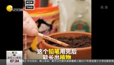 """妙""""筆""""生花:能長出植物的鉛筆"""