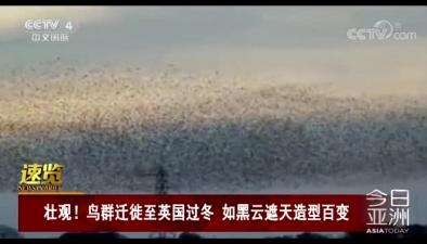 壯觀!鳥群遷徙至英國過冬 如黑雲遮天造型百變