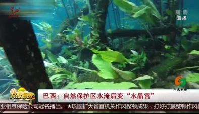 """巴西:自然保護區水淹後變""""水晶宮"""""""
