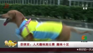 菲律賓:人犬趣味跑比賽 趣味十足