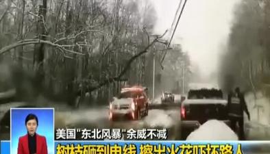 """美國""""東北風暴""""余威不減:樹枝砸到電線 擦出火花嚇壞路人"""