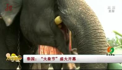 """泰國:""""大象節""""盛大開幕"""