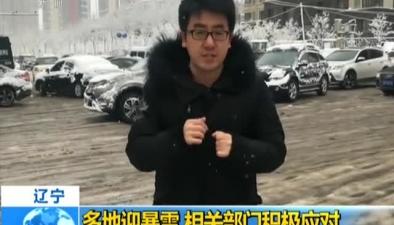 遼寧:多地迎暴雪 相關部門積極應對