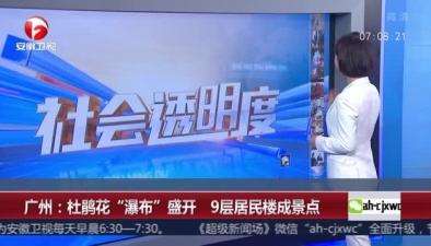 """廣州:杜鵑花""""瀑布""""盛開 9層居民樓成景點"""