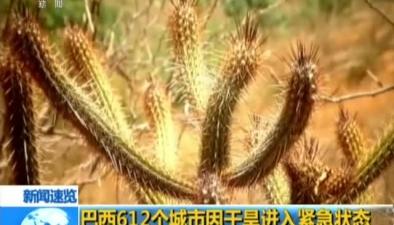 巴西612個城市因幹旱進入緊急狀態