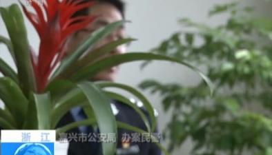 浙江:掃黑除惡在行動一起砸車事件牽出黑惡勢力團夥