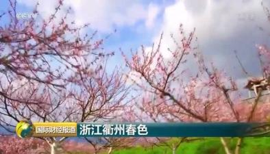 浙江衢州春色