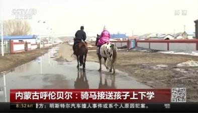 内蒙古呼伦贝尔:骑马接送孩子上下学