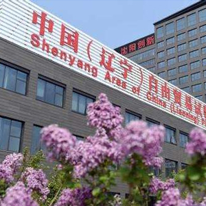 辽宁自贸区一周年 打造优质营商环境