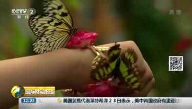 英國:奇妙蝴蝶展 翩翩飛舞鬧春天