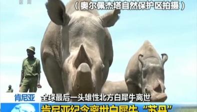 """全球最後一頭雄性北方白犀牛離世 肯尼亞紀念離世白犀牛""""蘇丹"""""""