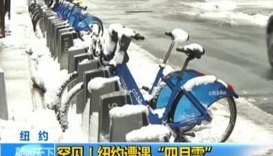 """紐約:罕見!紐約遭遇""""四月雪"""""""