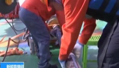 中國大洋46航次第四航段科考:發現大面積富稀土沉積