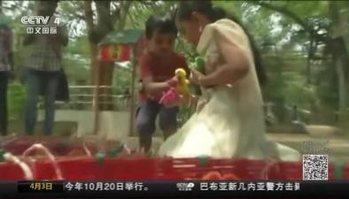 """印度街頭兜售""""彩色小雞"""" 每月賣出6000只"""