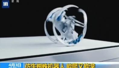 倣生蜘蛛機器人 能爬又能滾