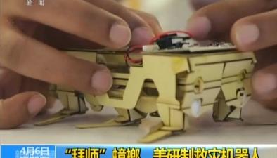 """""""拜師""""蟑螂 美研制救災機器人"""
