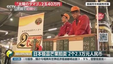 日本極品芒果拍賣 2個2.3萬元人民幣