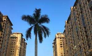 海南:樓市調控再升級 海南全域限購
