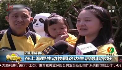 上海:大熊貓幼崽獲新名