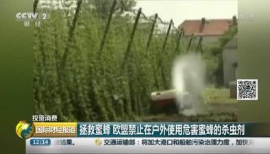 拯救蜜蜂 歐盟禁止在戶外使用危害蜜蜂的殺蟲劑