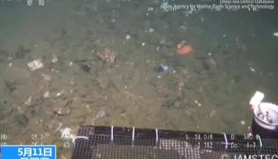 海底10000米 驚現塑料袋