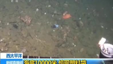 西太平洋:海底10000米 驚現塑料袋