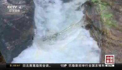 """陜西太白:""""魚躍龍門""""景象再現"""