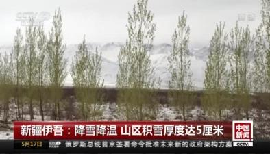 新疆伊吾:降雪降溫 山區積雪厚度達5厘米