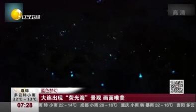 """藍色夢幻:大連出現""""熒光海""""景觀 畫面唯美"""