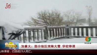 加拿大:部分地區突降大雪 學校停課
