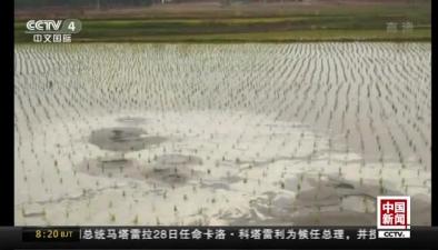 吉林松原市寧江區發生5.7級地震:震後稻田地出現砂土液化現象