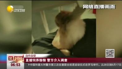 自作自受:直播飼養獼猴 警方介入調查
