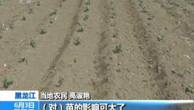 黑龍江黑河:人工增雨助農田抗旱