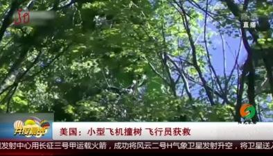 美國:小型飛機撞樹 飛行員獲救
