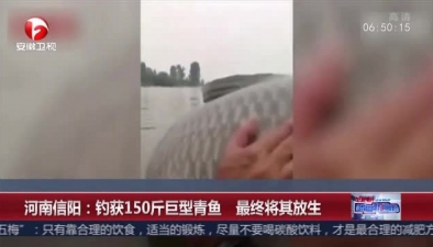 河南信陽:釣獲150斤巨型青魚 最終將其放生